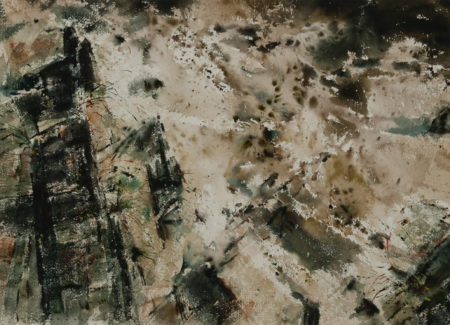 abstract image of sand, white and black mottled indistinct shapes