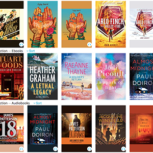Download popular e-books and audiobooks